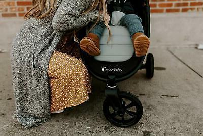 Baby Jogger 2019 Mini 2 Jet - Free Shipping!
